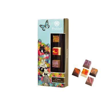Cubes Reglette Icônes 10 Bombones 90g PRALIBEL Belgian Chocolate